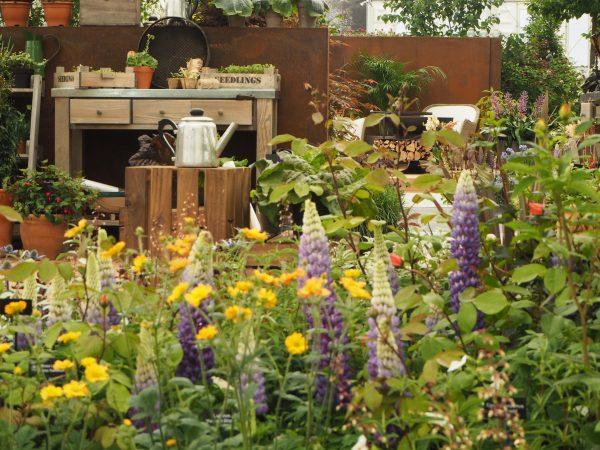 Yellow in the beautifully abundant 'Stihl Inspiration' garden