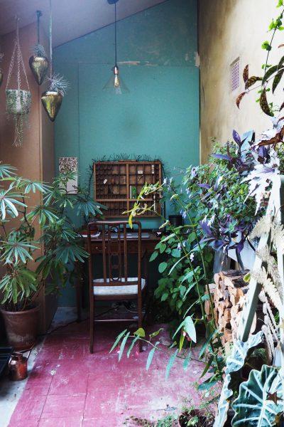 Houseplants and writing desk