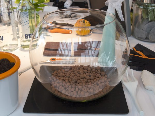 First, add a drainage layer of grit to your terrarium