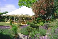 Garden party decorations - big parties on small budgets ...