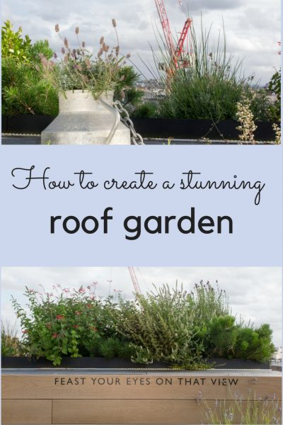 How to create a stunning roof garden