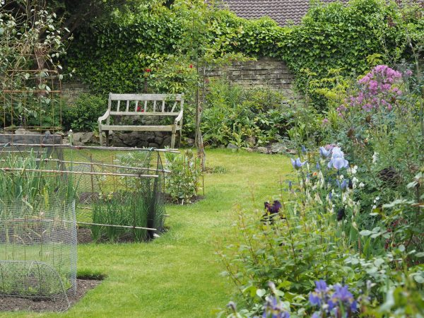Sarah created this garden from scratch in just a year or two.