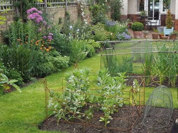 A garden from scratch means the veg beds can go anywhere!