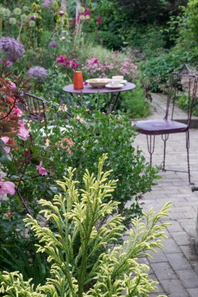 10 Garden Planting Ideas For Small Gardens The Middle Sized Garden Gardening Blog