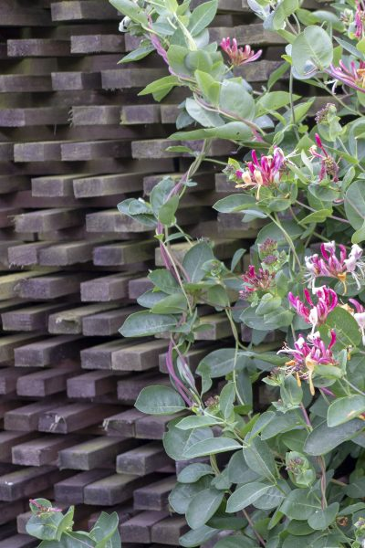 A pollinator-friendly wind screen