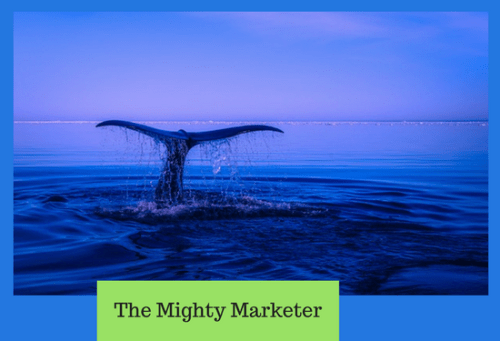 whales, or anchor clients, help you build a successful freelance business