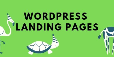 Example Real-World Usage of a WordPress Landing Page for Sales