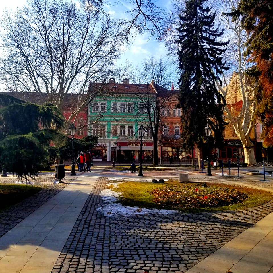 View across a park in Kosice, Slovakia to the other side of the street. The bare branches of the trees in the park hinder your view of the bright colored houses lining the opposite side of the street.