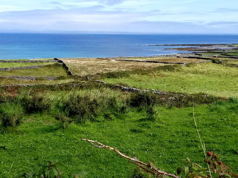 Stone wall remnants laid out like a grid on the island of Inis Mor, with contrasting blue ocean and green grass.