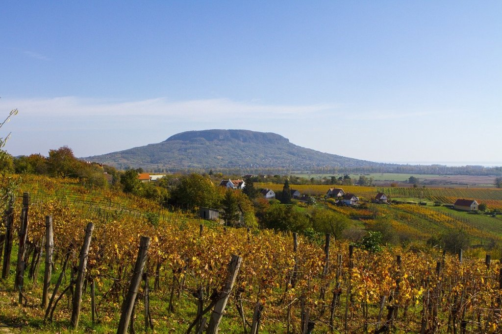 Rolling vineyards in Badacsony, Hungary - one of the best day trips from Budapest for wine lovers.