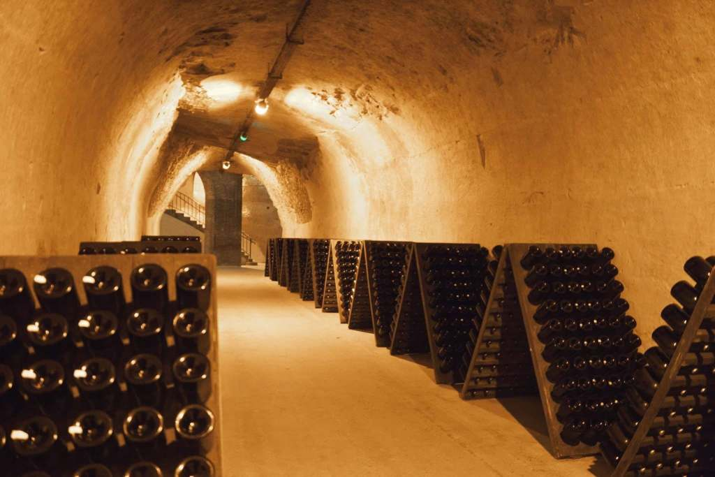 Looking at hundreds of stored bottles in the cellars of Maison Taittinger Champagne