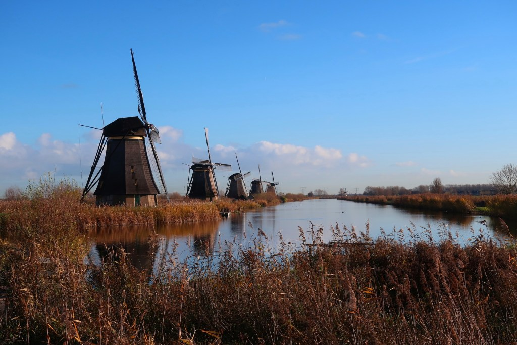 Windmills in the countryside of the Netherlands and blue skies.