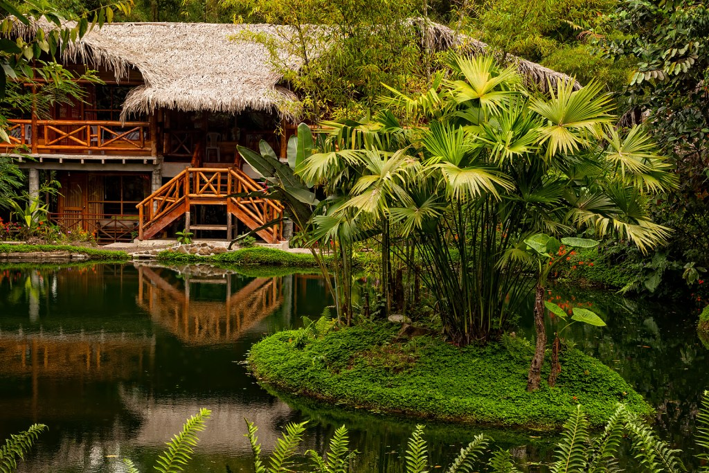 A wooden cabin is situated in the cloud forest of Mindo, Ecuador.