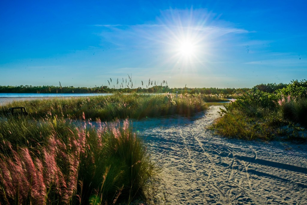 Sand paths through beach grass at Tigertail Beach on Marco Island with a bright sun shining.