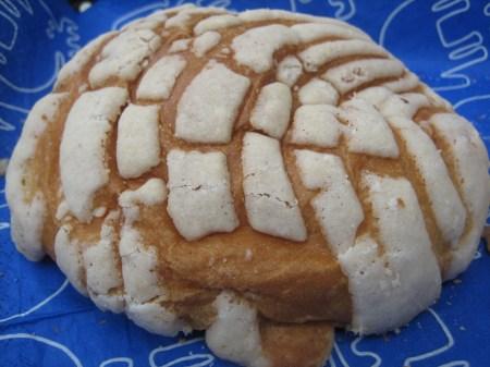 A fresh-baked concha roll from Pastelería La Gran Via in Col. Condesa, Mexico City