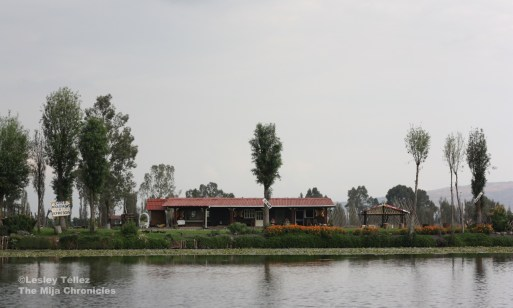 Xochimilco chinampa
