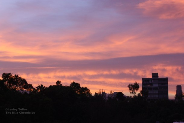 Sunset in the Col. Condesa, Mexico City. Photo taken by me in March 2013.