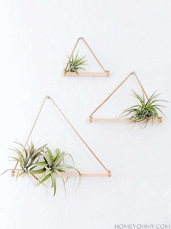 air-plant-hangers1