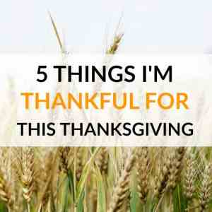 5 Things I'm Thankful For This Thanksgiving