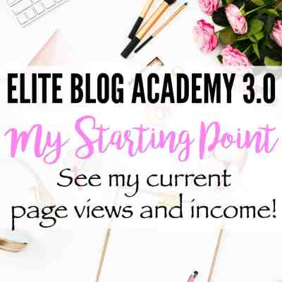 Elite Blog Academy 3.0 - Find out what my current page views and online income is and follow my journey through Elite Blog Academy 3.0!