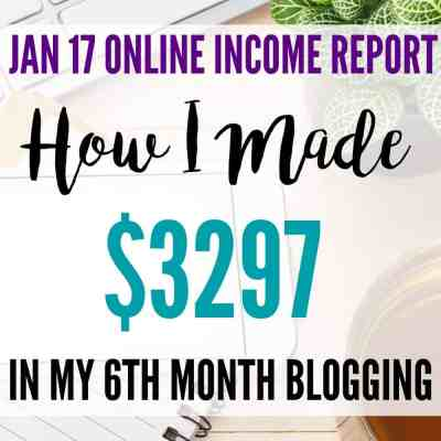 January 2017 Online Income Report