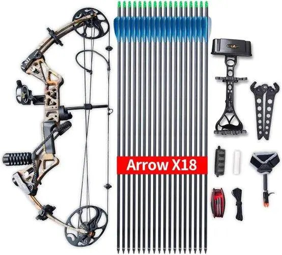 Compound Bow Topoint Archery