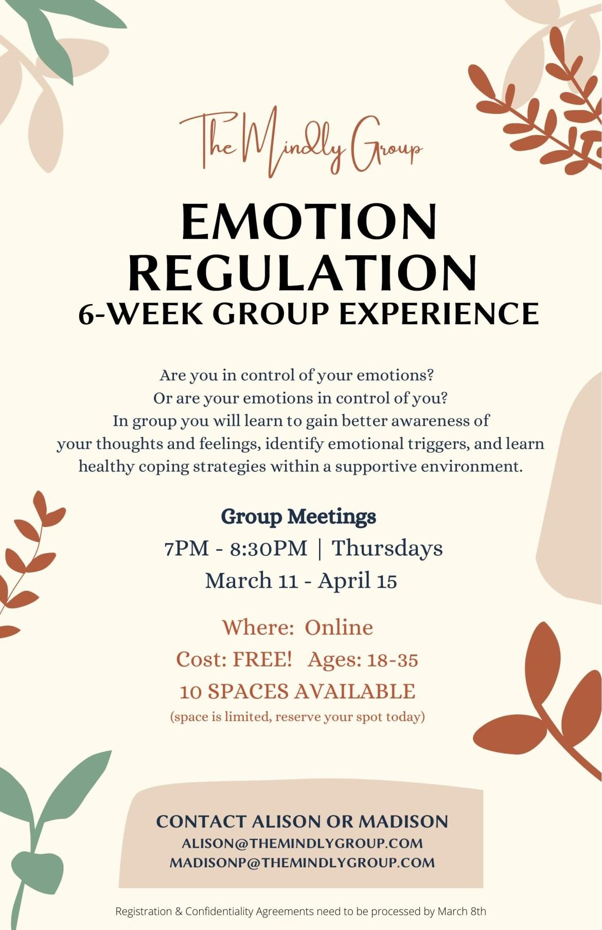 Emotion Regulation Group