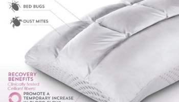 The Sleep Enhancing Neck Pillow