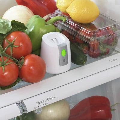 Refrigerator Air Purifying Preserver 1