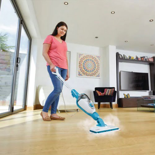 Virus Destroying Convertible Steam Cleaner 2