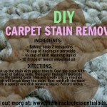 DIY Homemade Carpet Stain Remover for Tough Stains
