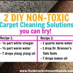 DIY Essential Oil Carpet Cleaner   2 Non-Toxic Cleaning Solutions
