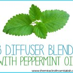 15 Best Peppermint Essential Oil Diffuser Blends