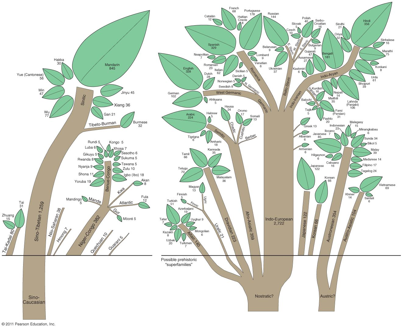 The Tree Map Of World Languages