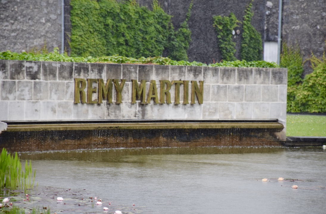 Pond at the Remy Martin Cellar in Cognac, France.