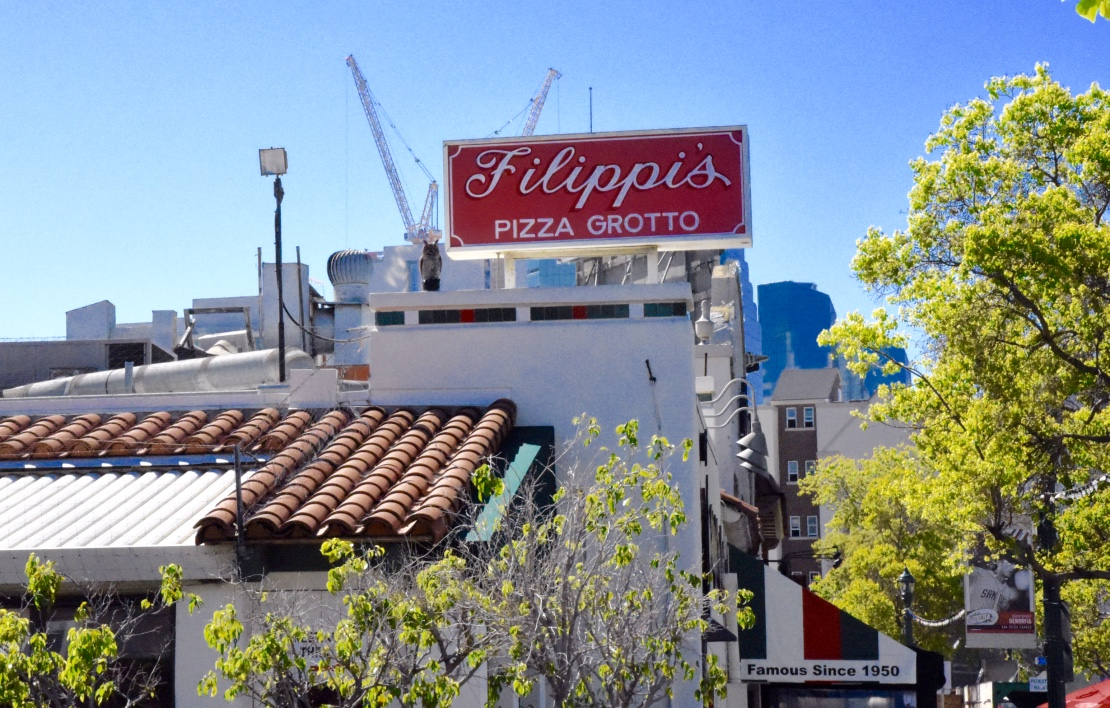 filippis pizza little italy
