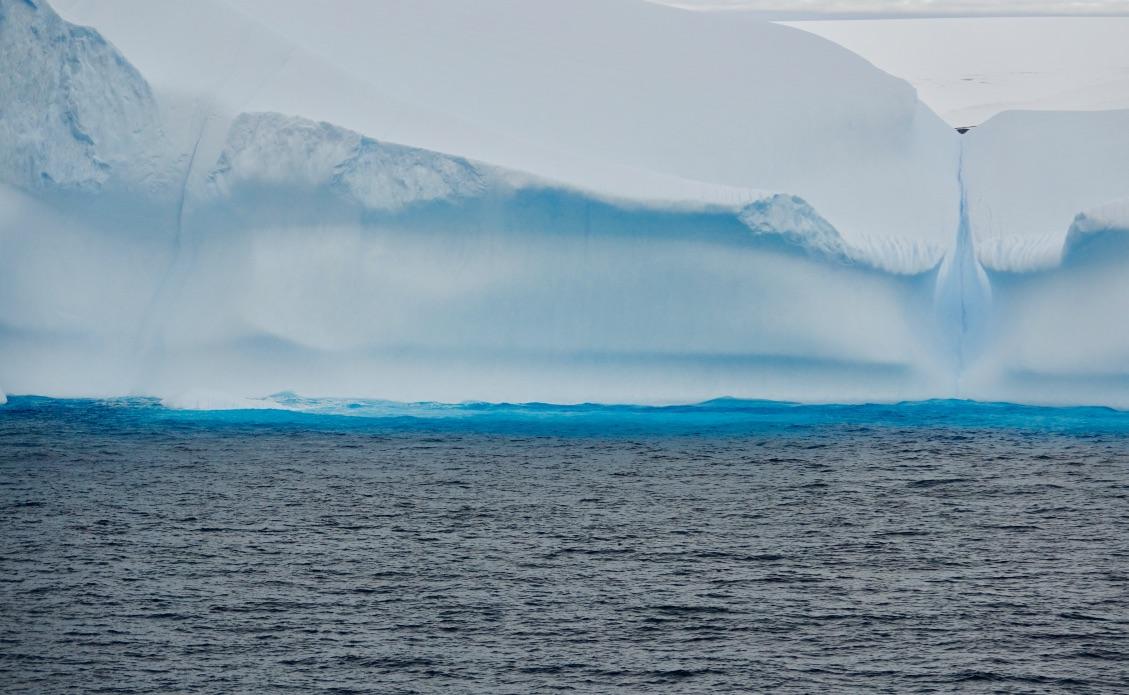 Island Penguins South Sea