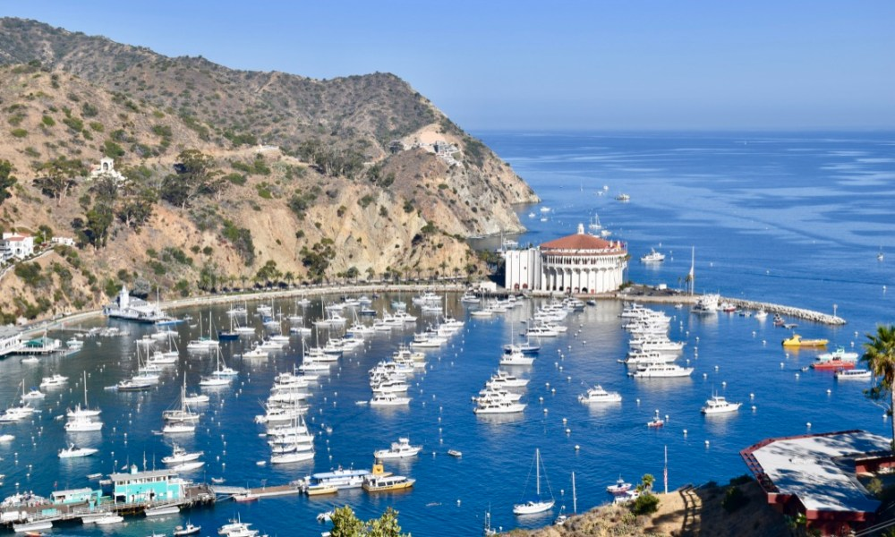 Exploring Catalina Island: A Journey to Avalon
