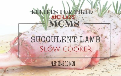 Succulent Lamb Bredie Slow Cooker That Will Take You 8 Minutes to Make!
