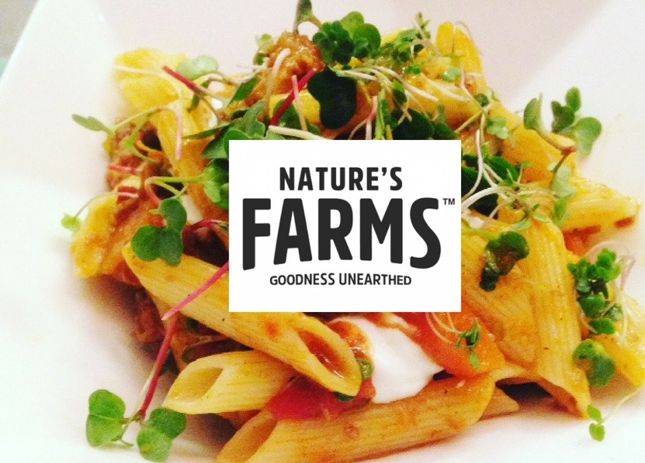 My #NaturesFarmsChallenge Cape Malay Curry with Penne