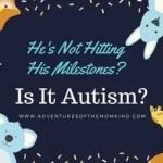 is it autism?