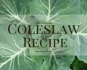 Creamy Coleslaw Recipe- Sometimes Simple is Better!