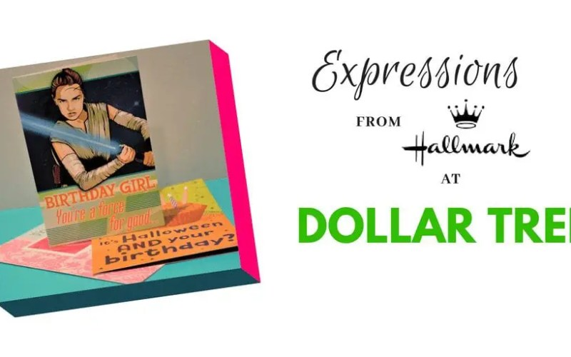 Expressions from Hallmark Greeting Cards at Dollar Tree!