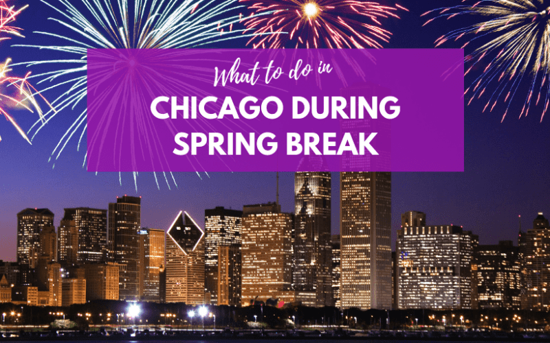 Where should I take my  Family during Spring Break in Chicago