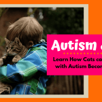 Numerous challenges exist for both autistic children and their parents, but new research has indicated that the interaction between autistic individual and cat has positive benefits for the child. This article investigates more about this relationship. How Cats Can Help Children With Autism Become More Social
