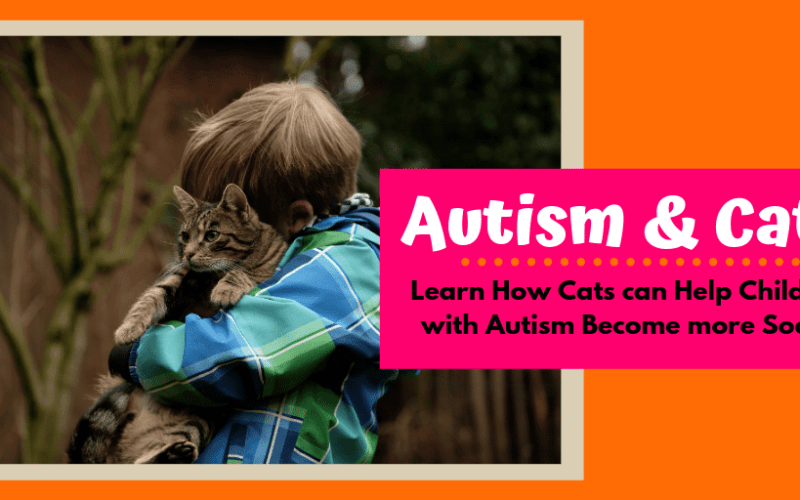 How Cats Can Help Children With Autism Become More Social
