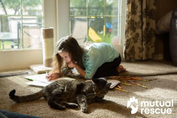 Jade & Trubs: The Story of the Unadoptable Cat & an Autistic Child