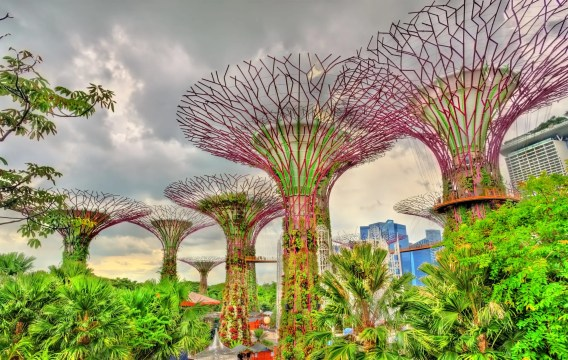 Singapore is an incredible family travel destination with fun thinngs for all ages. Discover the top things to do in Singapore with kids #travel #travelwithkids #kidstravel #singapore