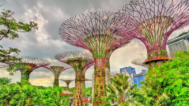 5 Fun Things to do in Singapore with Kids
