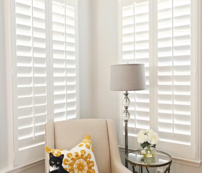 Let the Sun-Shine In with Sunburst Shutters!